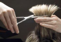 hair-dresser 250x172